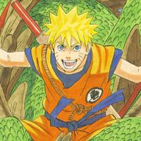 Naruto Goku Costume
