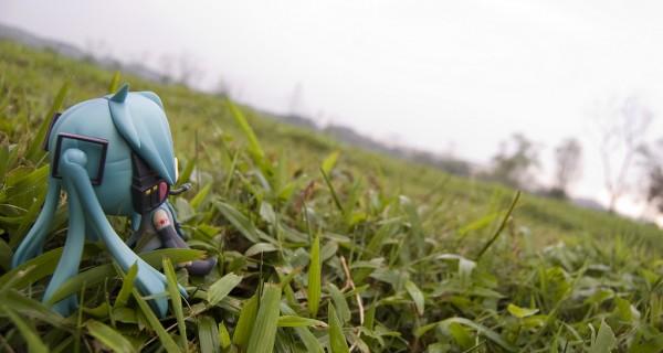 Miku Hatsune  Summer – Por Kodomut